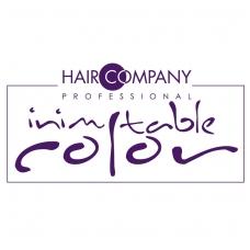 logo-ic-1